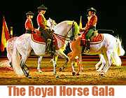 The Royal Horse Gala in der Olympiahalle (Foto: Veranstalter)