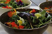 Edible Flowers Lunch-Workshop im Ingolstadt Village  (©Foto: Marikka-Laila Maisel)