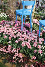 garten m nchen 2011 in der neuen messe m nchen ein paradies f r pflanzen und gartenfreunde vom. Black Bedroom Furniture Sets. Home Design Ideas