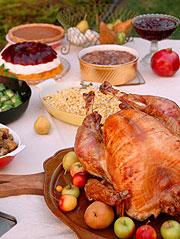 Truthann Thanksgiving (Foto: Liza McCorkle, IStockphoto)
