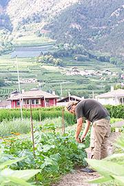 Partnersuche vinschgau